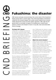 thumbnail of Fukushima-The Disaster Continues