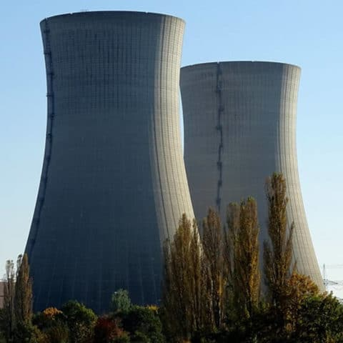 New nuclear: What's at stake for wildlife?